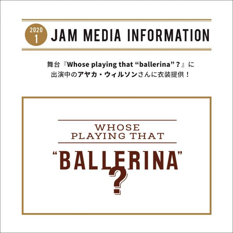 media_info_wptb